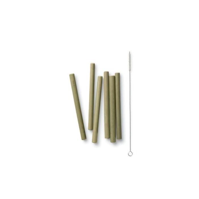 Short Bamboo Straws - Set of 6 with Brush