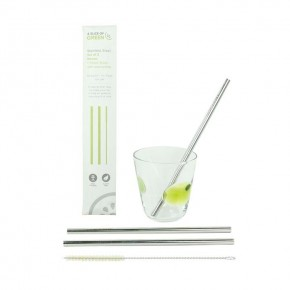 Set of Two Stainless Steel Straws + Brush