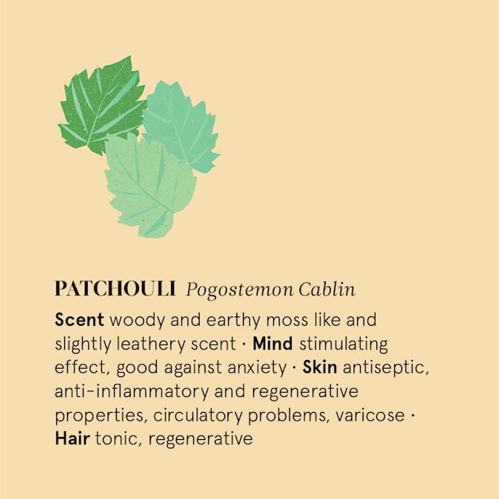 Patchouli Essential Oil - 12ml - Information